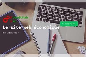 Création site internet beaujolais pro